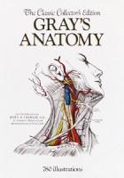 graysanatomy