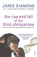 rise-and-fall-third-ape
