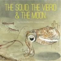 squid-vibrio-moon