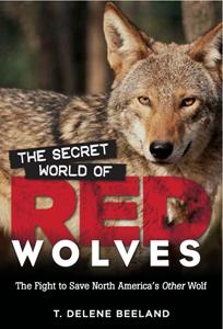 secret-world-of-red-wolves