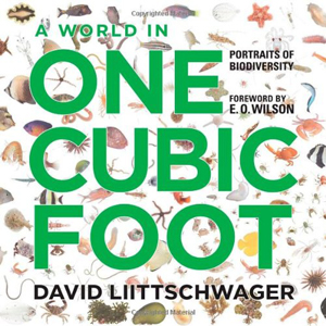 world-in-one-cubic-foot