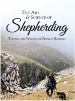 art-and-science-of-shepherding