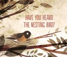 have-you-heard-the-nesting-bird