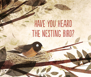 have-you-heard-the-nesting-bird