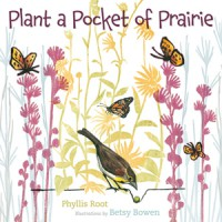 plant-a-pocket-of-prairie