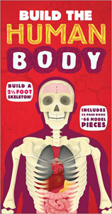 build-the-human-body