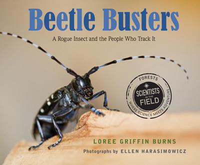 beetle-busters