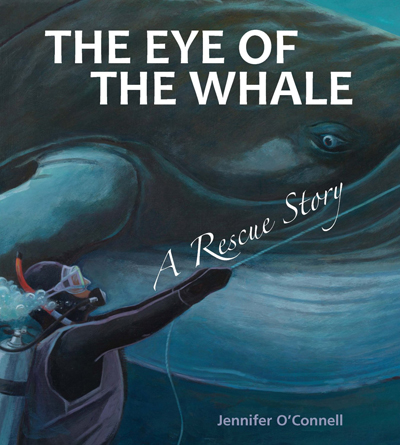 eye-of-the-whale