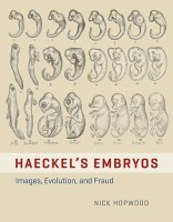 haeckels-embryos