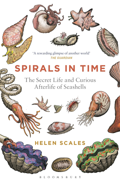 spirals-in-time