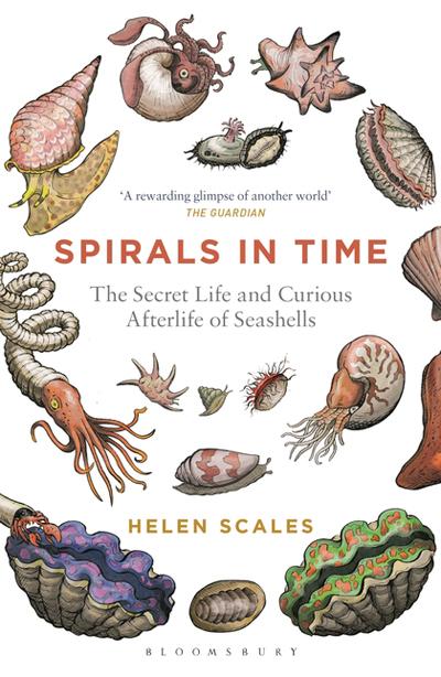 spirals-in-time