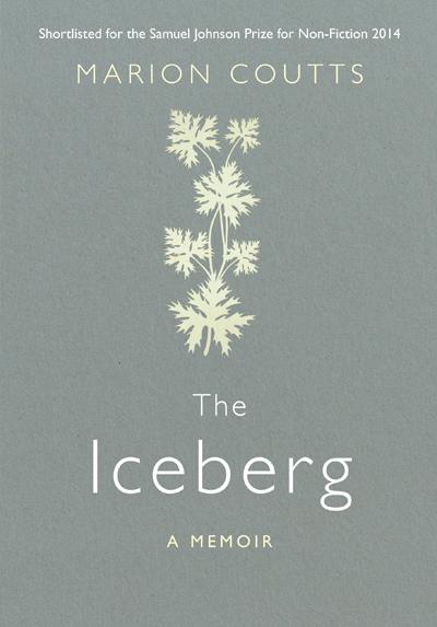 the-iceberg