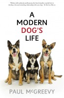 a-modern-dogs-life