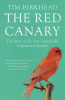 red-canary