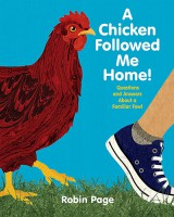 a-chicken-followed-me-home