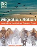 migration-nation
