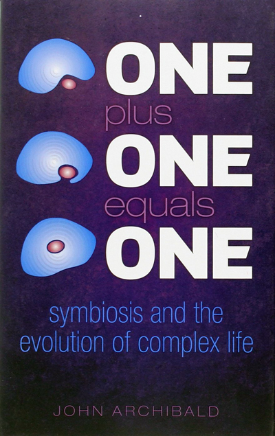 one-plus-one-equals-one