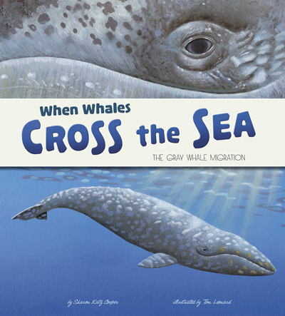 when-whales-cross-the-sea