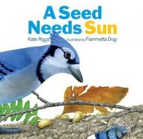 a-seed-needs-sun