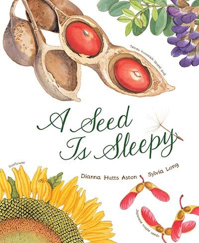 seed-is-sleepy