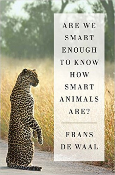 are-we-smart-enough-to-know-how-smart-animals-are