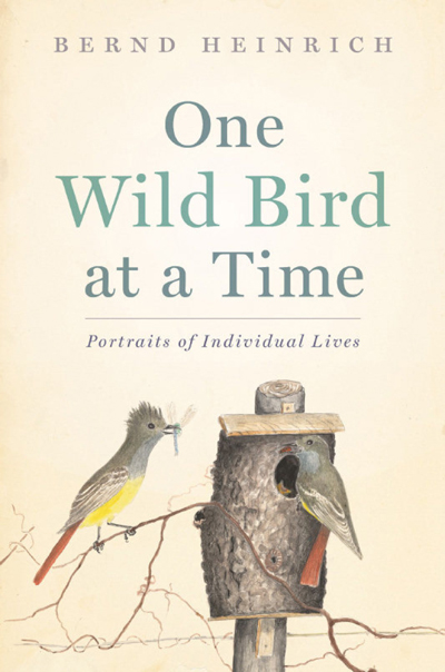 BK-ARRIVALS-ANIMALS-JUNE5 One Wild Bird at a Time: Portraits of Individual Birds, Bernd Heinrich, Houghton Mifflin Harcourt. Uploaded by: Dundas, Deborah