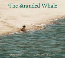 stranded-whale
