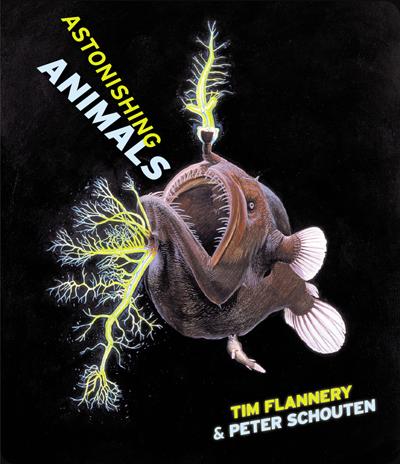 astonishing-animals