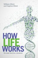 how-life-works