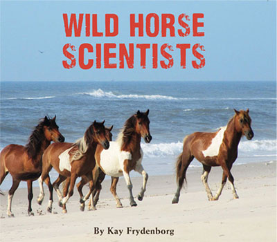 wild-horse-scientists