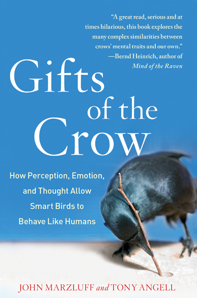 gifts-of-the-crow-400