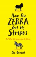 how-the-zebra-got-its-stripes
