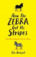 how-the-zebra-got-its-stripes