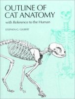 outline-of-cat-anatomy