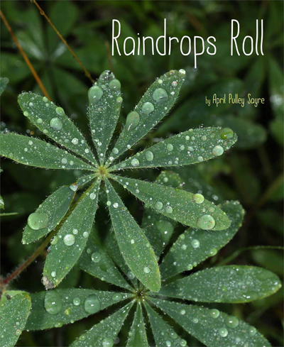 raindrops-roll